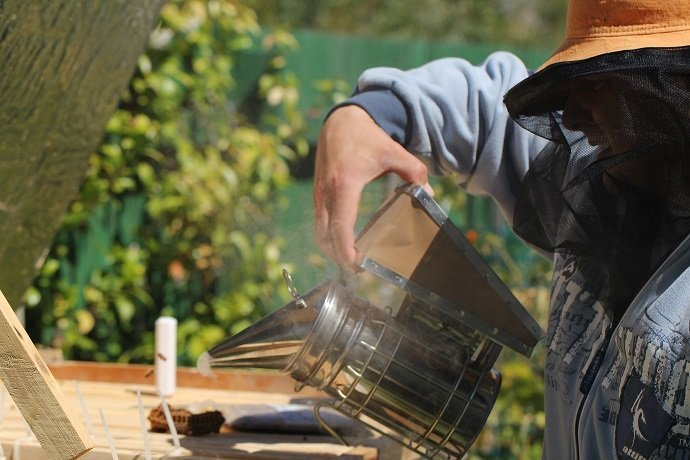 Integrating Beekeeping with Permaculture 02