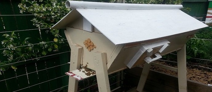 Photo of Integrating Beekeeping with Permaculture