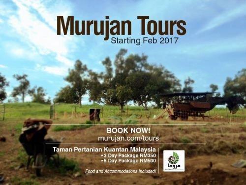 Introducing Murujan Tours in Malaysia 14