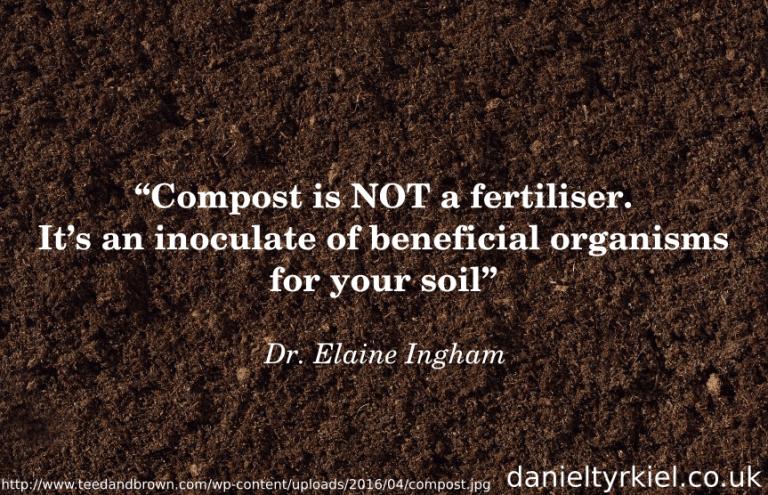 Soil Foodweb 06