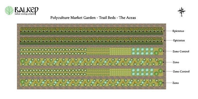 The Polyculture Market Garden Study 05