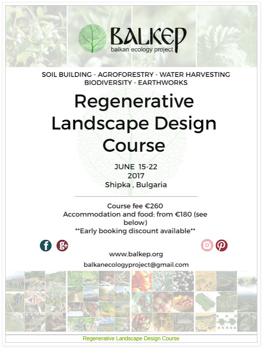 The polyculture market garden study results from year 2 for Home study garden design courses