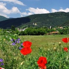 A Unique Learning Opportunity Studying The Productivity Of Polyculture Market Gardens In The Beautiful Balkans feature
