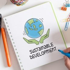 SUSTAINABLE DEVELOPMENT CONCEPT