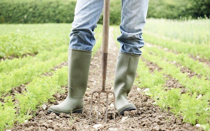 Organic Farming in France 01