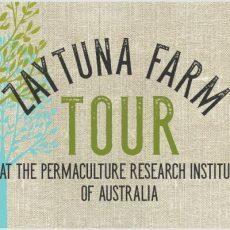 Summer  Zaytuna Farm Tour-2017-Zaytuna-Farm-Tour -