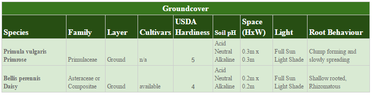 The Early Polleniser Polyculture 15