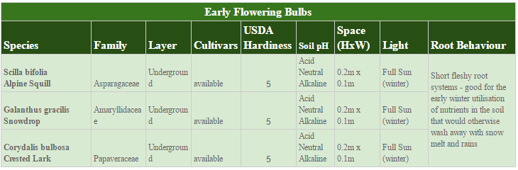 The Early Polleniser Polyculture 20