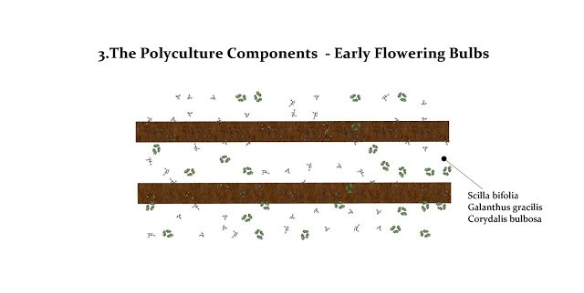 Scattered plantings of early flowering bulbs
