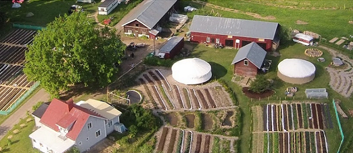 Why Are There So Few Profitable Permaculture Farms