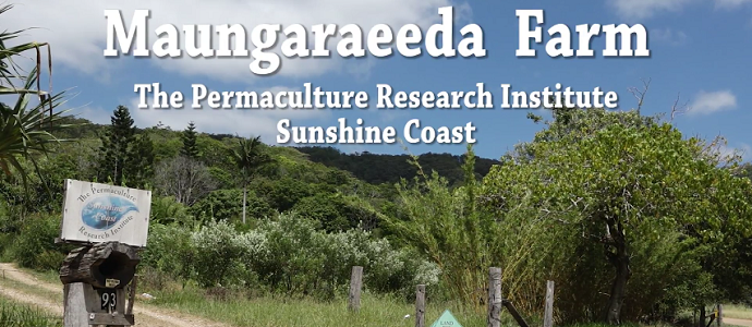 Maungaraeeda Farm feature