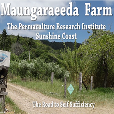Maungaraeeda Farm