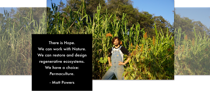 Photo of The Permaculture Student 2: A Guidebook For The Future
