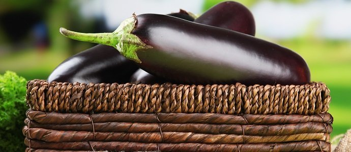 The Incredible Edible Eggplant feat