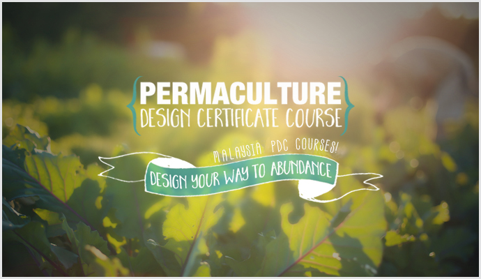 Permaculture-Design-Certificate-Course final 6