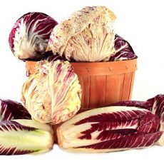 Red Radicchio feat