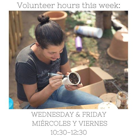 Volunteer Hours, Courtesy of Claire Henkel