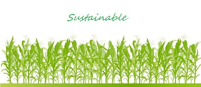 Photo of Simple Ways to Improve Sustainability in Farming Supply Chains