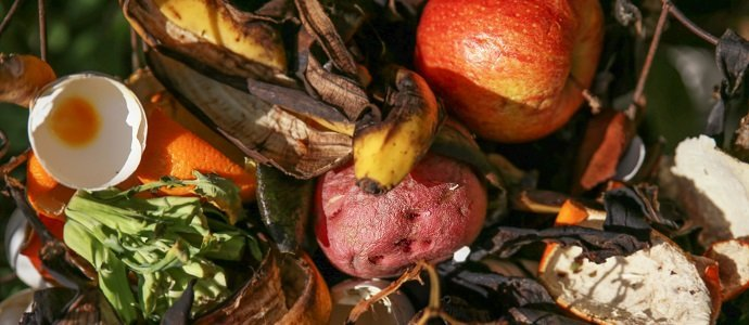 Photo of Sustainable Uses of Food Waste