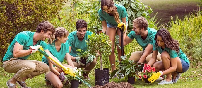 Photo of Creating Community Through the Act of Gardening