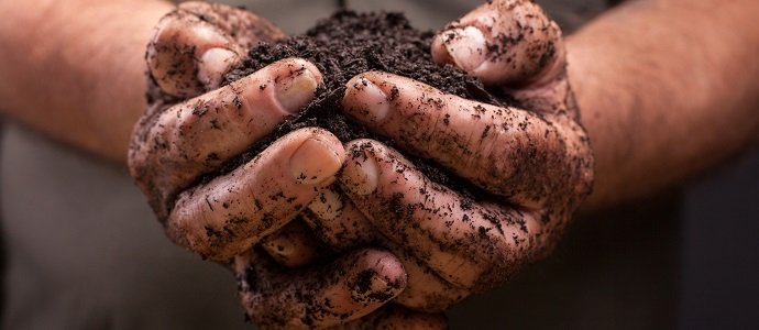 Photo of A Primer on Creating Soil