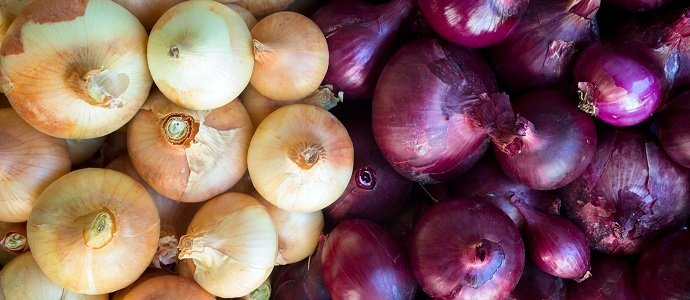Photo of Outstanding Onions