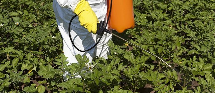 Photo of Pesticides Pollution