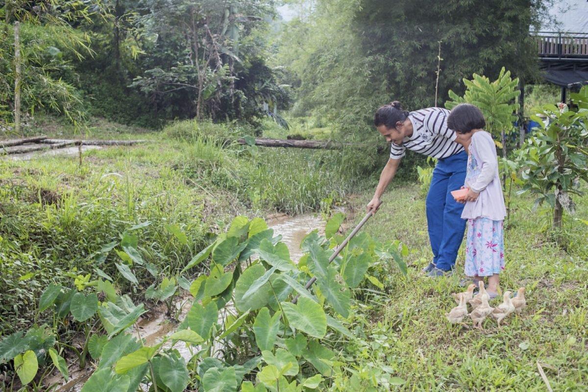 Photo of From Big City Kuala Lumpur to Rural Kampung, Chalin Food Forest