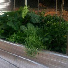 A simple aluminum raised garden bed