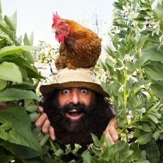 Costa Georgiadis with a chicken in the garden