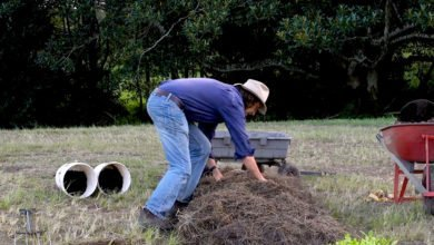 Photo of How to Make Instant Garden Beds