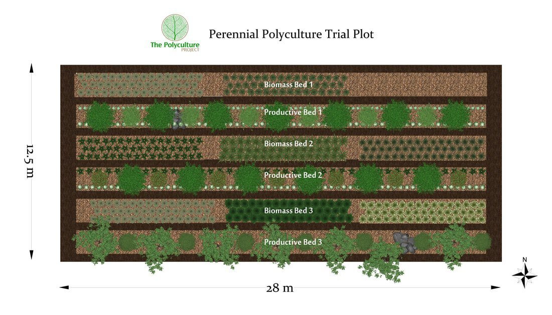 Photo of The Polyculture Project Crowdfunder