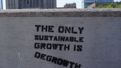 Photo of The Advantages to Sustainability in Urban Areas