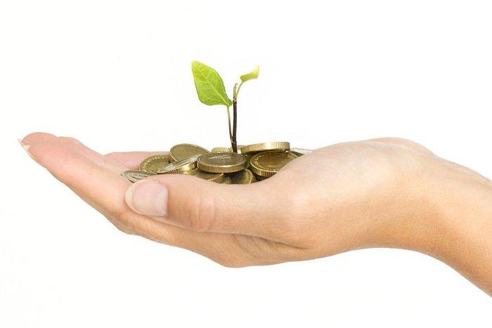 Growing Financial Freedom