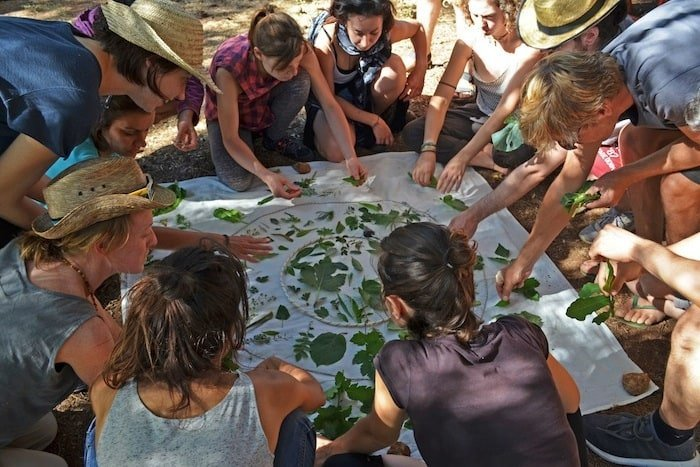 School of earth permaschool - Permaculture Magazine Prize 2019 Runner Up