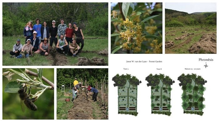 Balkep Polyculture Project Week 5