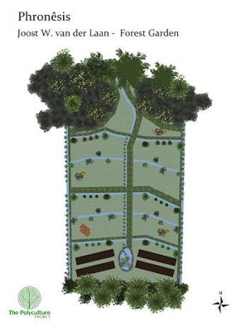 Phronensis Garden Design