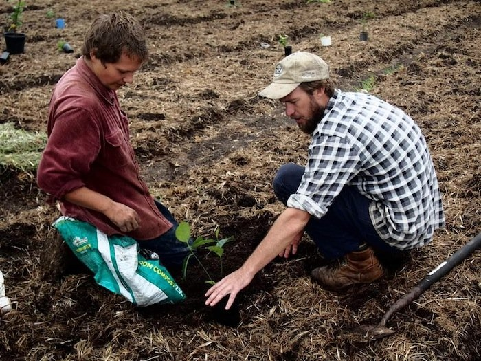Money Less Permaculture Traveller